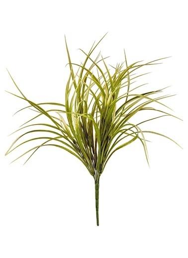 The Mia Fiorina Grass Yeşil Beyaz Beyaz